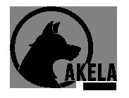Akela Agency